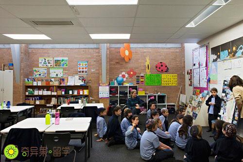 新西兰小学生讨论